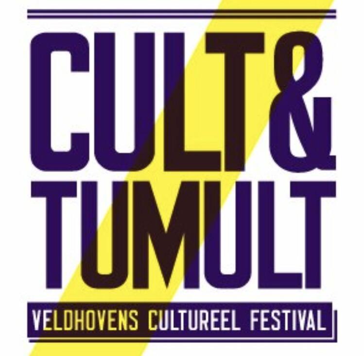 Cameratoezicht tijdens Cult & Tumult Veldhoven!