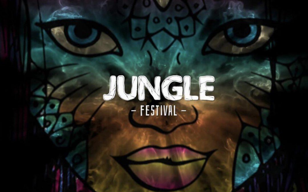 Cameratoezicht tijdens Jungle festival op Ijzeren man Eindhoven, geleverd aan FeDa Security Solutions!